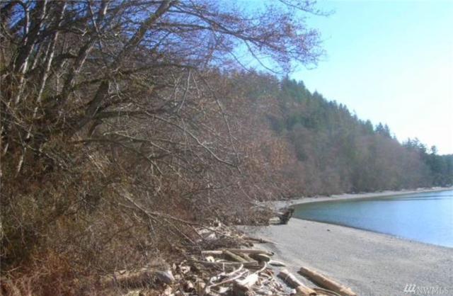 200 S Woodland Beach Rd W, Camano Island, WA 98282 (#1291872) :: Homes on the Sound
