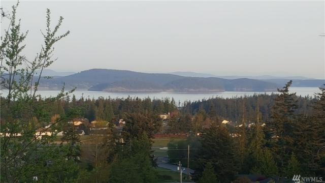 2309 Antone Wy, Anacortes, WA 98221 (#1291988) :: Real Estate Solutions Group