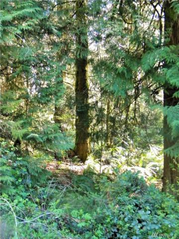 33 #Lot Bethel-Burley Rd Rd SE, Port Orchard, WA 98366 (#1292276) :: Real Estate Solutions Group