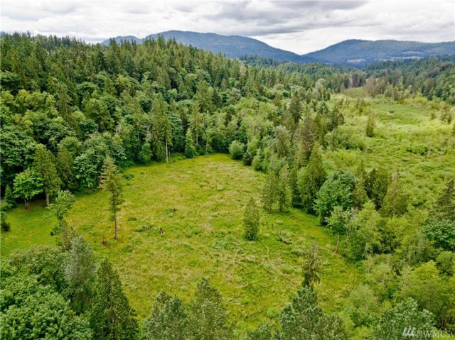 25520 SE Old Black Nugget Rd, Issaquah, WA 98029 (#1292313) :: The DiBello Real Estate Group