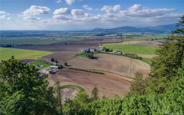 50-xx Reese Hill Rd, Sumas, WA 98295 (#1292410) :: Morris Real Estate Group