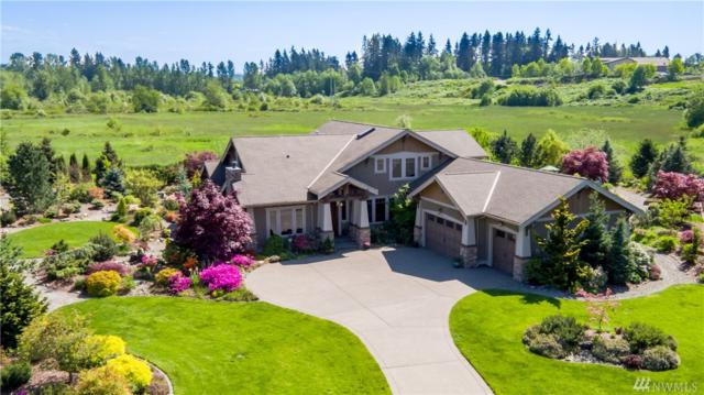 3014 220th Ave E, Lake Tapps, WA 98391 (#1292448) :: Real Estate Solutions Group