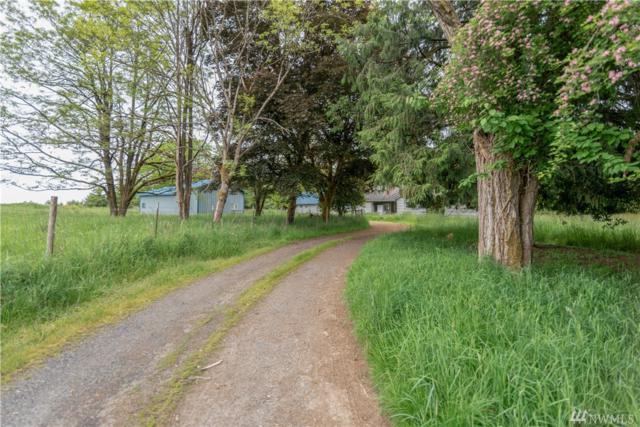 1453 Hwy 603, Napavine, WA 98565 (#1292702) :: Homes on the Sound