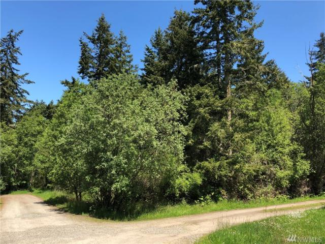 3300 Cliff St, Port Townsend, WA 98386 (#1293182) :: Real Estate Solutions Group
