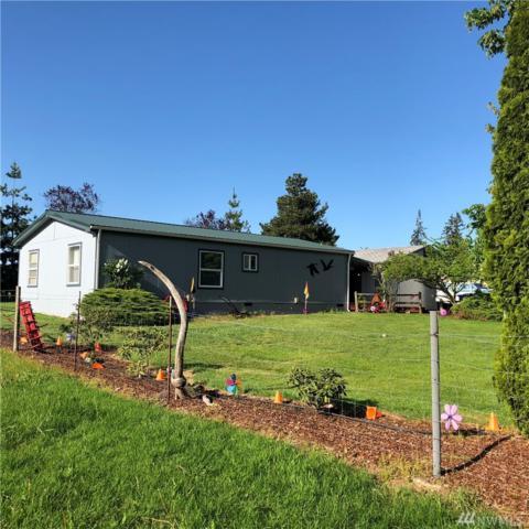 185-B Wilson Rd, Napavine, WA 98565 (#1293254) :: Homes on the Sound