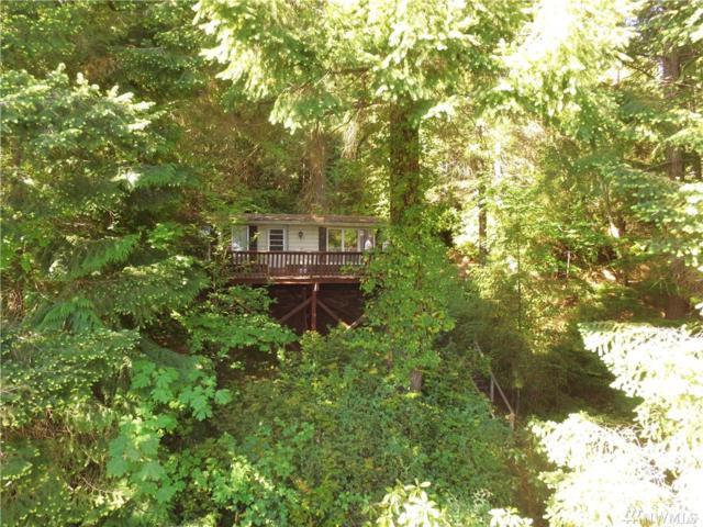 40 Seamount Dr, Brinnon, WA 98320 (#1293263) :: Better Homes and Gardens Real Estate McKenzie Group