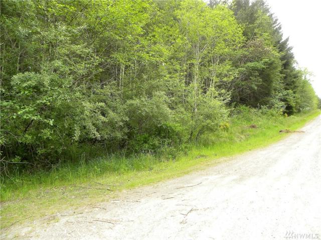 0-Lot 29 Joyce Lane, Belfair, WA 98528 (#1293677) :: Tribeca NW Real Estate