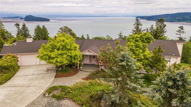 508 Grandview Dr, Oak Harbor, WA 98277 (#1293688) :: Ben Kinney Real Estate Team