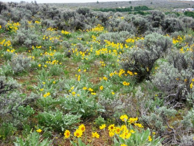 0 Chipmunk Trail Rd Lot 3, East Wenatchee, WA 98802 (#1293716) :: The DiBello Real Estate Group