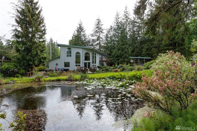 5446 Mt Baker Hwy, Deming, WA 98244 (#1293910) :: Homes on the Sound