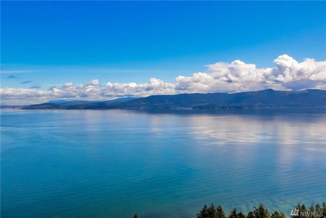 0 Lot 64 Eliza Island, Bellingham, WA 98226 (#1294109) :: Real Estate Solutions Group