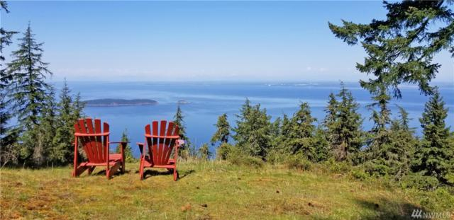 3701 Buck Mountain Rd, Orcas Island, WA 98245 (#1294189) :: Ben Kinney Real Estate Team