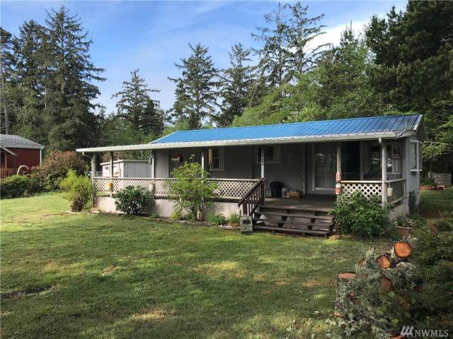 29029 R St, Ocean Park, WA 98631 (#1294357) :: Homes on the Sound