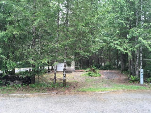120-5 Big River Blvd W, Deming, WA 98244 (#1294403) :: Real Estate Solutions Group