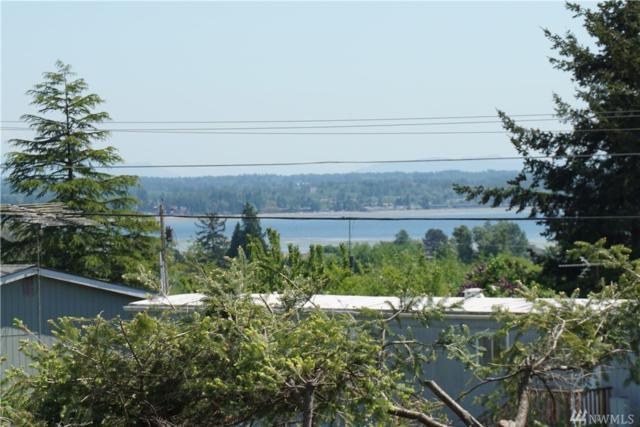 5574 Hillvue Rd, Blaine, WA 98230 (#1294467) :: Ben Kinney Real Estate Team