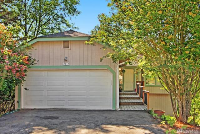7019 14th Ave SW, Seattle, WA 98106 (#1294537) :: Homes on the Sound