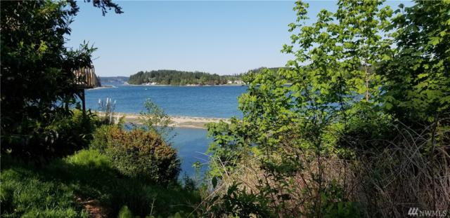 90 E Bahama Dr, Grapeview, WA 98546 (#1294813) :: Homes on the Sound
