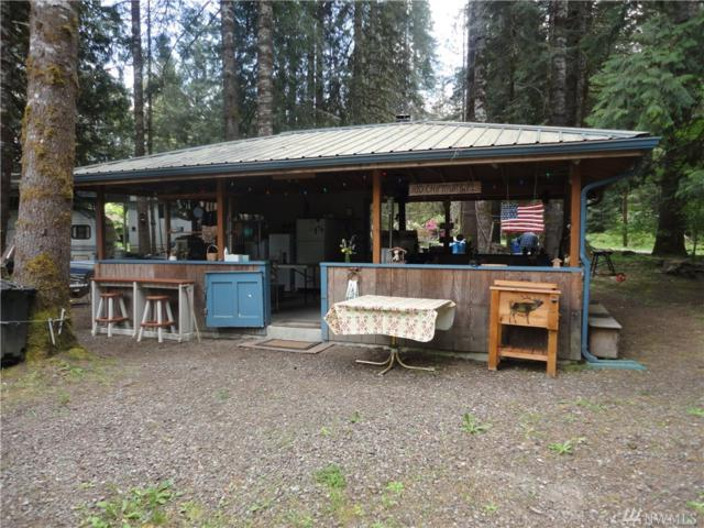 100 Chipmunk Place, Packwood, WA 98361 (#1295321) :: Morris Real Estate Group