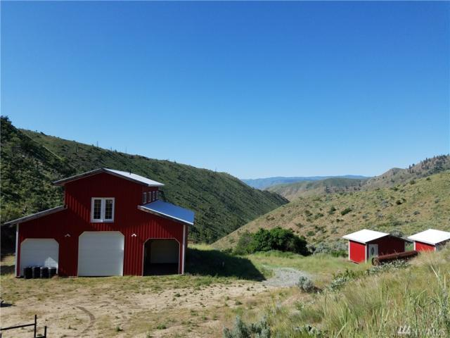 101 Downey Canyon Rd, Chelan, WA 98816 (#1295435) :: Homes on the Sound