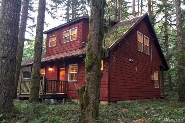 7493 Miller Way, Deming, WA 98244 (#1295653) :: Morris Real Estate Group