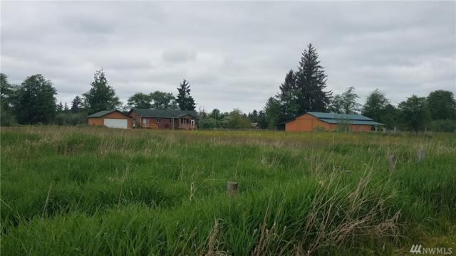 1909 State Route 401, Naselle, WA 98638 (#1295792) :: Real Estate Solutions Group