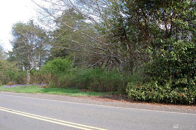 8-Lot Copalis Beach Rd, Copalis Beach, WA 98535 (#1295852) :: Better Homes and Gardens Real Estate McKenzie Group