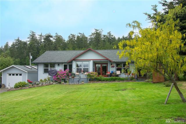 141 Pine Dr, Port Townsend, WA 98368 (#1295865) :: Real Estate Solutions Group