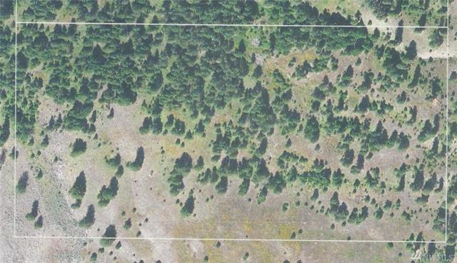 0-Lot 4 Fish Hatchery Rd, Republic, WA 99166 (#1296212) :: Morris Real Estate Group