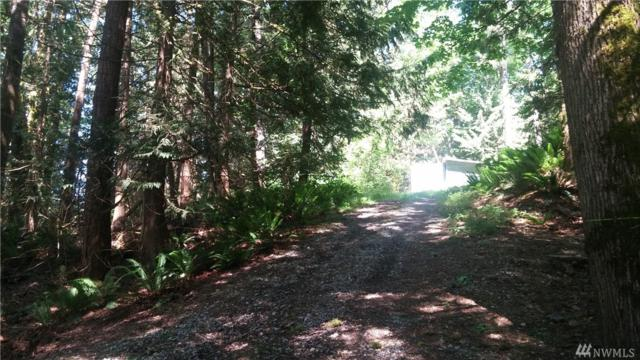 6414 Santa Fe Trail, Maple Falls, WA 98266 (#1296283) :: Morris Real Estate Group