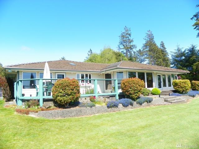 31 Rock View Lane, Hoquiam, WA 98550 (#1296294) :: Better Properties Lacey