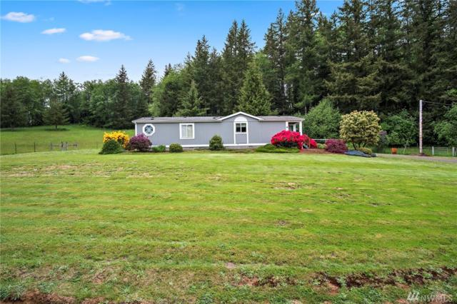 54 Richter Rd, Raymond, WA 98577 (#1296308) :: Real Estate Solutions Group