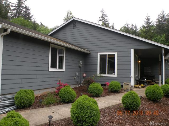 227 Sholes Dr, Adna, WA 98532 (#1296409) :: Chris Cross Real Estate Group