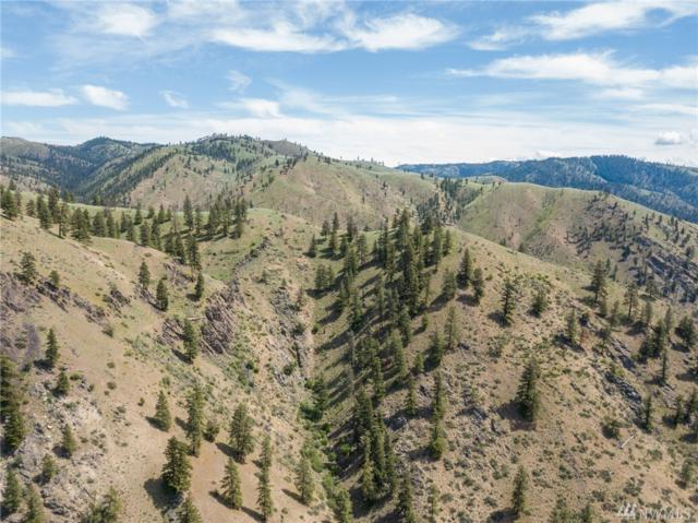 0 Entiat River Rd, Entiat, WA 98822 (#1296498) :: Real Estate Solutions Group