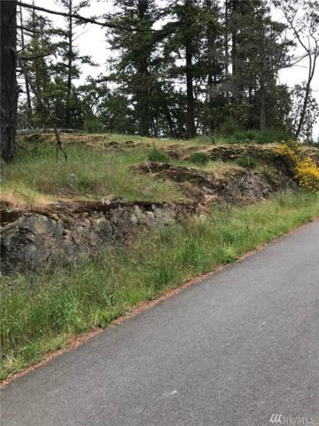 0-Lot 2 Finnegan Ridge, San Juan Island, WA 98250 (#1296597) :: Crutcher Dennis - My Puget Sound Homes