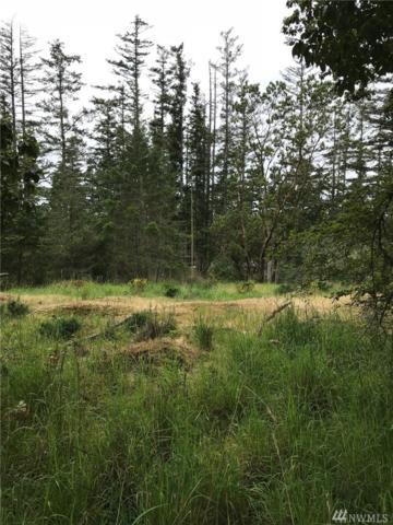0-Lot 3 Finnegan Ridge, San Juan Island, WA 98250 (#1296612) :: Crutcher Dennis - My Puget Sound Homes