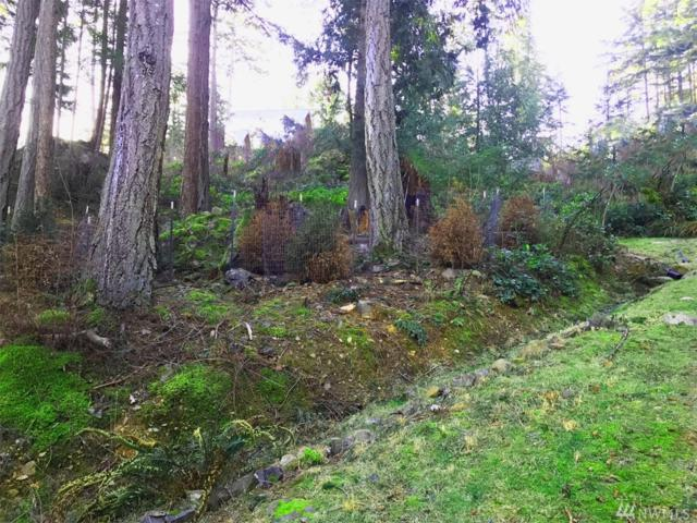 1146 Clark Cir, Lummi Island, WA 98262 (#1296941) :: KW North Seattle