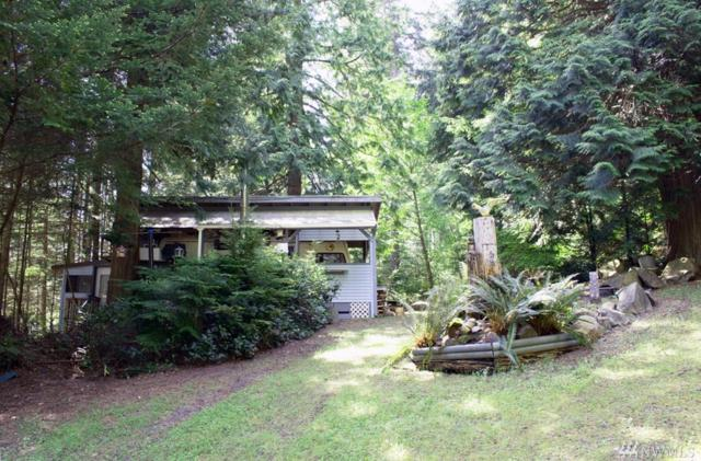 1181 Scenic Ave, Lummi Island, WA 98262 (#1296942) :: The Home Experience Group Powered by Keller Williams