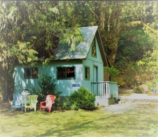 63981 Cascade Park Dr, Marblemount, WA 98267 (#1297030) :: Real Estate Solutions Group