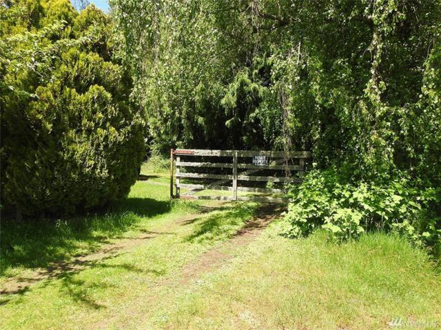 8903 30th St SE, Lake Stevens, WA 98205 (#1297459) :: The DiBello Real Estate Group