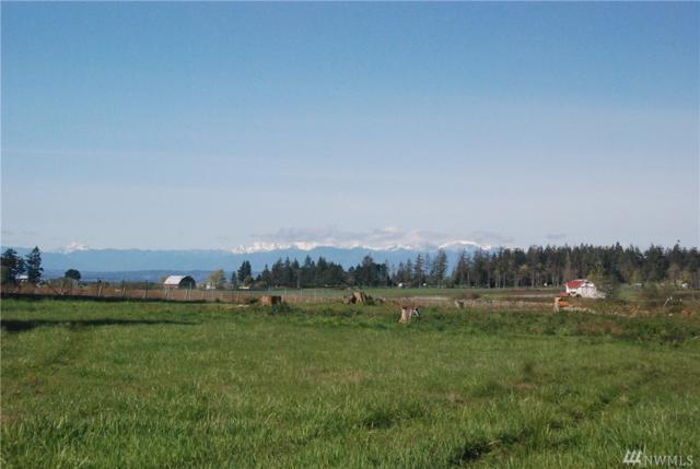 5534 Cameron Rd, Freeland, WA 98249 (#1297544) :: Homes on the Sound