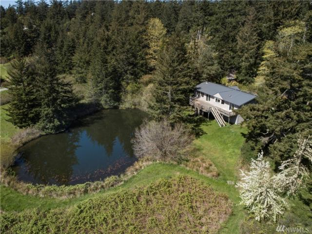 262 Little Mountain Rd, Friday Harbor, WA 98250 (#1297685) :: The Kendra Todd Group at Keller Williams