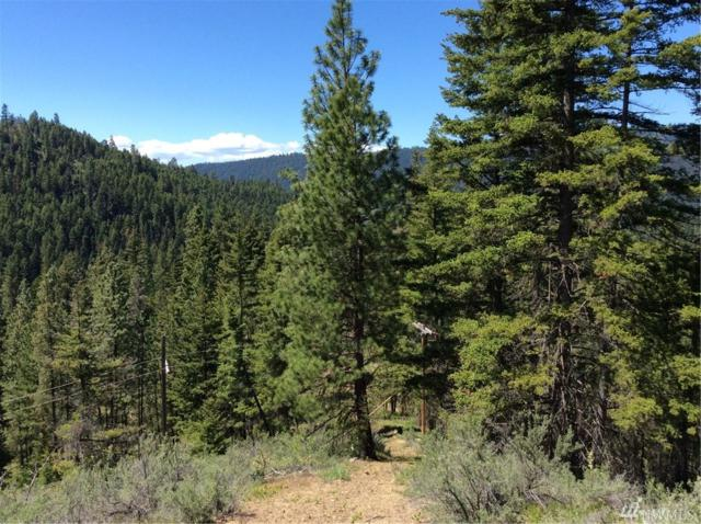 0 Red Top Rd, Cle Elum, WA 98922 (#1297695) :: Homes on the Sound