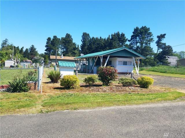 2025 224th Place, Ocean Park, WA 98640 (#1298046) :: Icon Real Estate Group