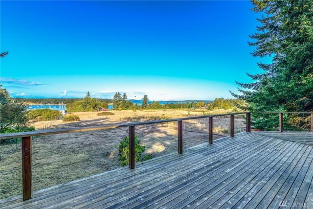 75 Andrews Lane, Lopez Island, WA 98261 (#1298096) :: Morris Real Estate Group