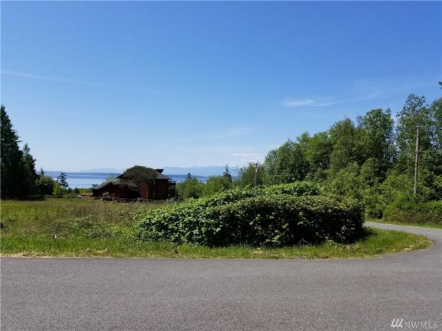 0-XXX Chambers Ct, Coupeville, WA 98239 (#1298178) :: Icon Real Estate Group
