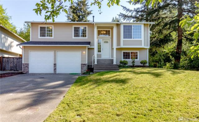 16811 114th Av Ct E, Puyallup, WA 98374 (#1298185) :: Homes on the Sound