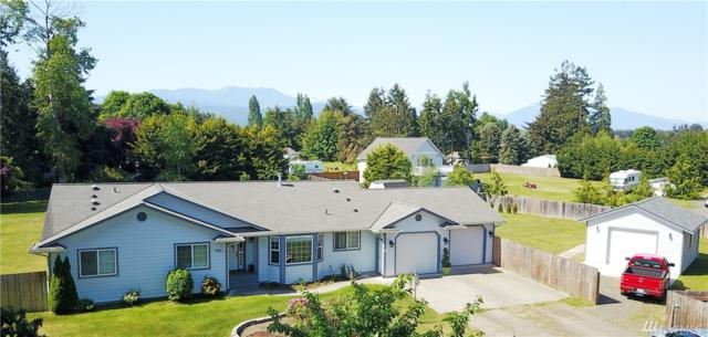 9156 Old Olympic Hwy, Sequim, WA 98382 (#1298251) :: Better Homes and Gardens Real Estate McKenzie Group