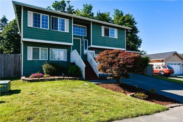 824 97th Ave NE, Lake Stevens, WA 98258 (#1298412) :: Icon Real Estate Group