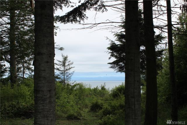 0 West Bluff Dr, Port Angeles, WA 98362 (#1298523) :: Kwasi Bowie and Associates