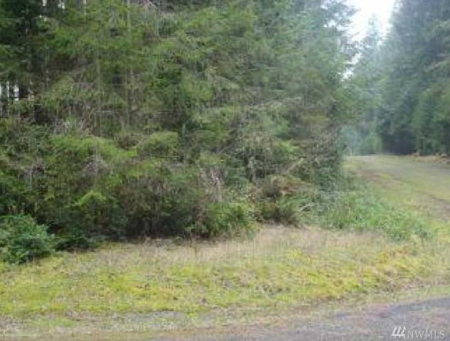 11021 Admiralty Wy, Anderson Island, WA 98303 (#1298547) :: Real Estate Solutions Group